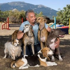 How to Communicate Leadership with Calm and Assertive Energy | Cesar Millan