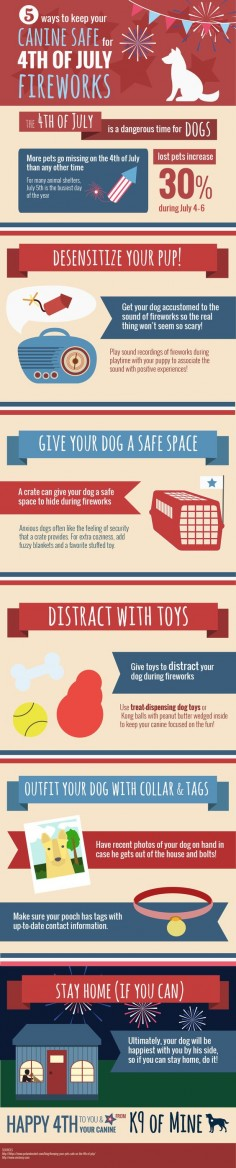 How to Keep Your Canine Safe for 4th of July Fireworks [Infographic] #dogs #4thOfJuly
