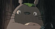 I got Totoro-Raven