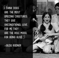 """I think dogs are the most amazing creatures; They give unconditional love. For me they are the role model for being alive"" -- Gilda Radner"