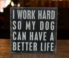 I work hard so my dog can have a good life > lol
