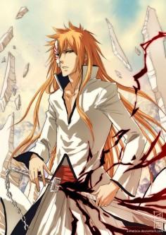 Ichigo Espada -