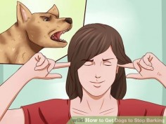 Image titled Get Dogs to Stop Barking Step 2