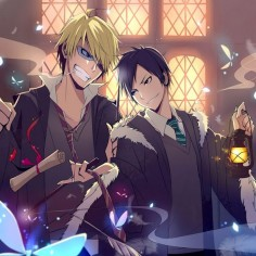 In this anime wallpaper, we see Izaya and Shizuo from Durarara!! doing a cosplay from Harry Potter. Both do look cute.
