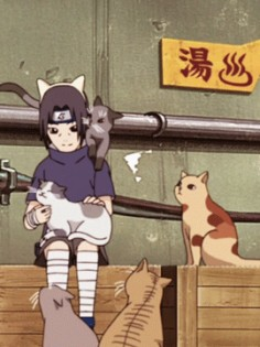 Itachi and cat ♥~hanyuuu