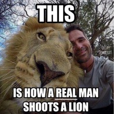 Kevin Richardson, the lion whisperer ♥