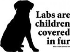 Lab Quotes and Sayings | Labrador Retriever Dog Lover T-Shirts and Gifts