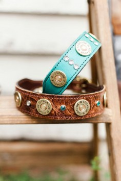 Leather Dog Collar // 12 Gauge Shotgun Shell Dog Collar