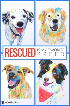 Let us celebrate the special bond you share with the pup that rescued you! Get started today at My Pooch Face! #rescues #puppylove