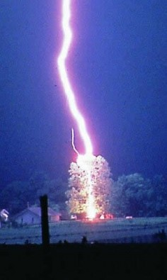lightning strikes a tree, notice the leader on the left side of the main lightning bolt. #lightning #storms #photography
