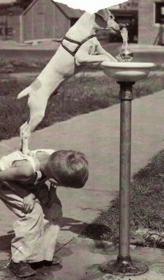 Little boy helping his thirsty dog to get a drink from the drinking fountain • (photo: National Geographic)