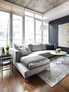 Modern Living Room Design, Pictures, Remodel, Decor and Ideas - page 6