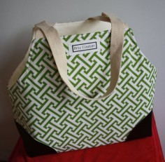 Modern Small Dog Carrier Green and White Geometric Design
