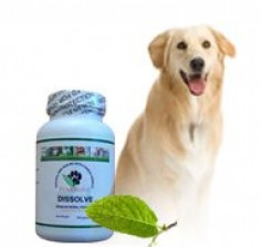 My Chinese herbal formula that has helped many dogs rid themselves of fatty tumors.