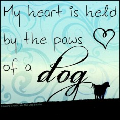 My heart is held by the paws of a dog. ♥