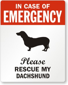 need this dachshund sign.