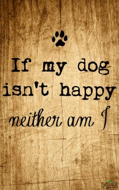 Nothing makes me happier than seeing a happy dog face. #thinkbeyond #commissioned #dogquote