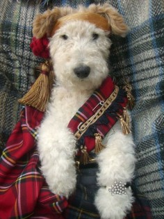 Oh just love those terriers