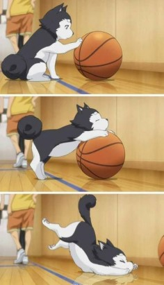 Omg this part is so CUTE!!!!! Kuroko number 2 (Kuroko no basket)