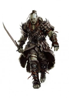 Orc 2012