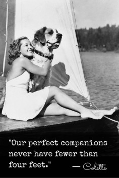 """Our perfect companions never have fewer than four feet."" ― Colette #quotes #animals #pets #wisdom"
