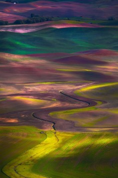 Palouse, Washington ☮ღツ
