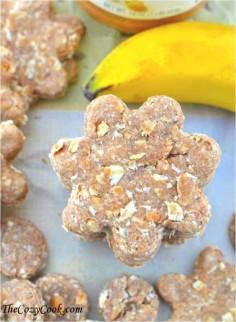 Peanut Butter Oatmeal Banana Dog Treats   17 Healthy Homemade Pet Food Recipes and Treats