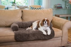 Pet Bed & Furniture Cover
