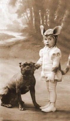 pit bulls have always been the nannying dog