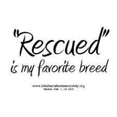 """""""Rescued"""" is my favorite breed!"""