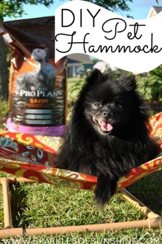 Savor moments with your pet this summer with a DIY Pet Hammock. See the easy tutorial! #ad #PawsToSavor #client