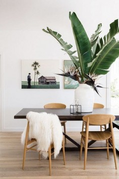 Sculptural plant | Styling by Rebecca Jansman and Suzanne Gorman / Photography by Jason Busch via Inside Out
