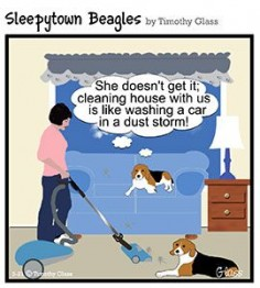 Sleepytown Beagles Cartoons, by Timothy Glass