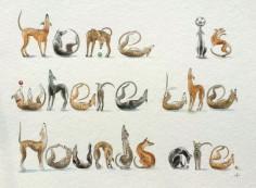 Spelling Greyhounds by Nancy Farmer.