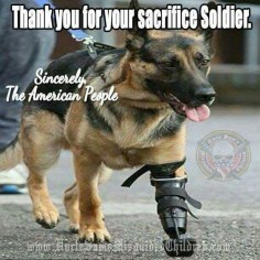 Thank You for Your Sacrifice, Soldier ♡