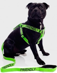 The best-selling new dog collars, leads & harnesses for responsible dog owners. The unique range of color coded dog collars, leads and harnesses are helping responsible dog owners all over the world to educate the public about their dog's behavior, thus avoiding any unwanted encounters