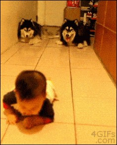 The cutest kind of imitation.