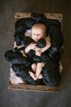 The entire California crew — little Brydon + the litter of nine pals — were born on the exact same day this past summer.