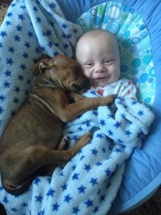 The first days of the powerful Puppy/Baby Alliance. | The 30 Greatest Moments In The History Of Cute