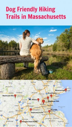 There are plenty of great dog hikes in Massachusetts. Pick a destination and a level that works for you and your dog. Hiking with your dog is healthy for both of you, and is a great way to spend time together!