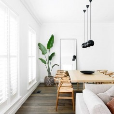 There is so much to love about interior spaces but bright light (and white!) spaces are my favourite. Beautiful image by @Biasol: Design Studio #wishbonechair #blackpendant #indoorplant by neutralinstinct