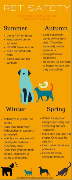 This pet safety infographic will help you to easily visualize these pet safety tips for year round pet safety. Tips for Summer, Spring, Winter and Fall.