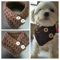 This scarf is great for any small dog. Its stretchy pattern. This is suggested for the following toy breeds: Chihuahua, Yorkie, Poodle,