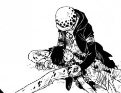 Trafalgar D. Water Law and Monkey D. Luffy One piece