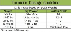 Turmeric for Dog Arthritis: 8 Evidence Based Benefits, Dosage and Recipes | Turmeric for Health!