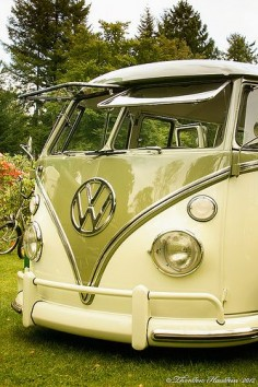 Vw camper van Split Bus