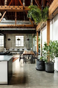 what a loft! Concrete provides such a soft visual background for the furnishings to become the visual impact