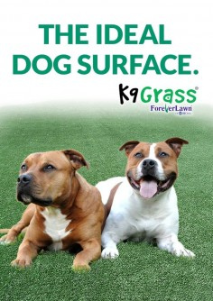 What's best for your dog and what's best for your lawn now comes in one product, K9Grass, artificial grass for dogs. When you have a dog, keeping your lawn looking nice takes more effort and may even become unmanageable, but with K9Grass it's easier than ever to keep your lawn looking great and your dog happy and clean with antimicrobial protection.