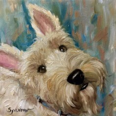 Wheaten Scottie Scottish Terrier art CANVAS PRINT of the original painting Dog Pet Portrait Mary Sparrow unstretched and rolled