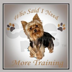Yorkie Needs Training Tile Coaster